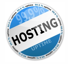 99.9 % Website Hosting Uptime.  Inertia Group Website Hosting in Frankfort, IL